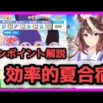 【動画】【ウマ娘】夏合宿攻略のコツを3分で解説!!